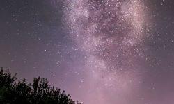 Horoskop: 9 August Sternzeichen