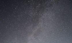 Horoskop: 11 August Sternzeichen
