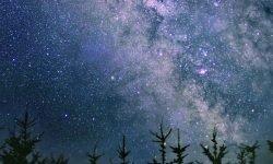Horoskop: 12 August Sternzeichen