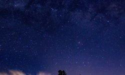 Horoskop: 13 August Sternzeichen