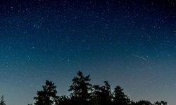 Horoskop: 19 August Sternzeichen