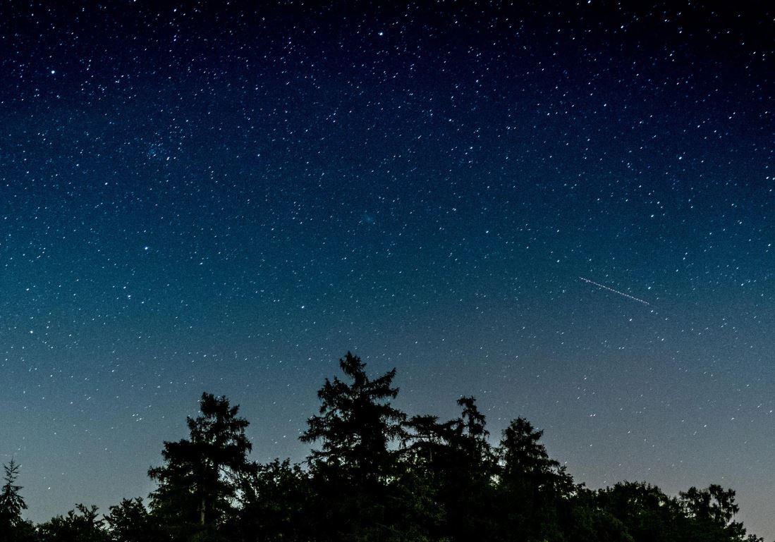19 August Sternzeichen