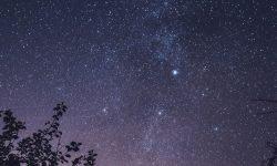 Horoskop: 29 August Sternzeichen