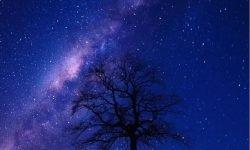 Horoskop: 11. Oktober Sternzeichen