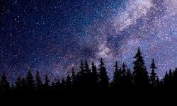 Horoskop: 23. Oktober Sternzeichen