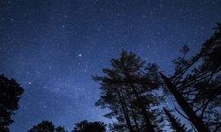 Horoskop: 2. November Sternzeichen