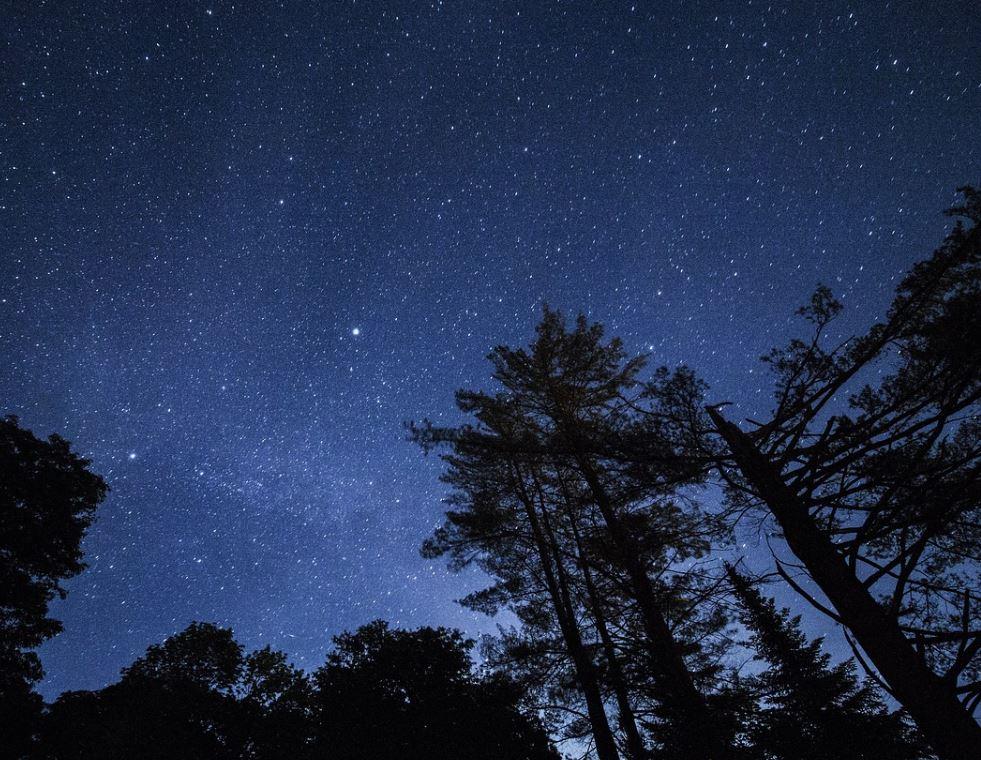 2. November Sternzeichen