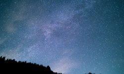 Horoskop: 8. November Sternzeichen