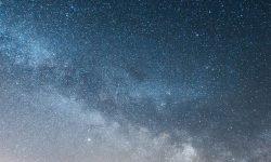 Horoskop: 11. November Sternzeichen