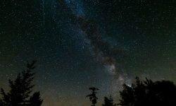 Horoskop: 17. November Sternzeichen