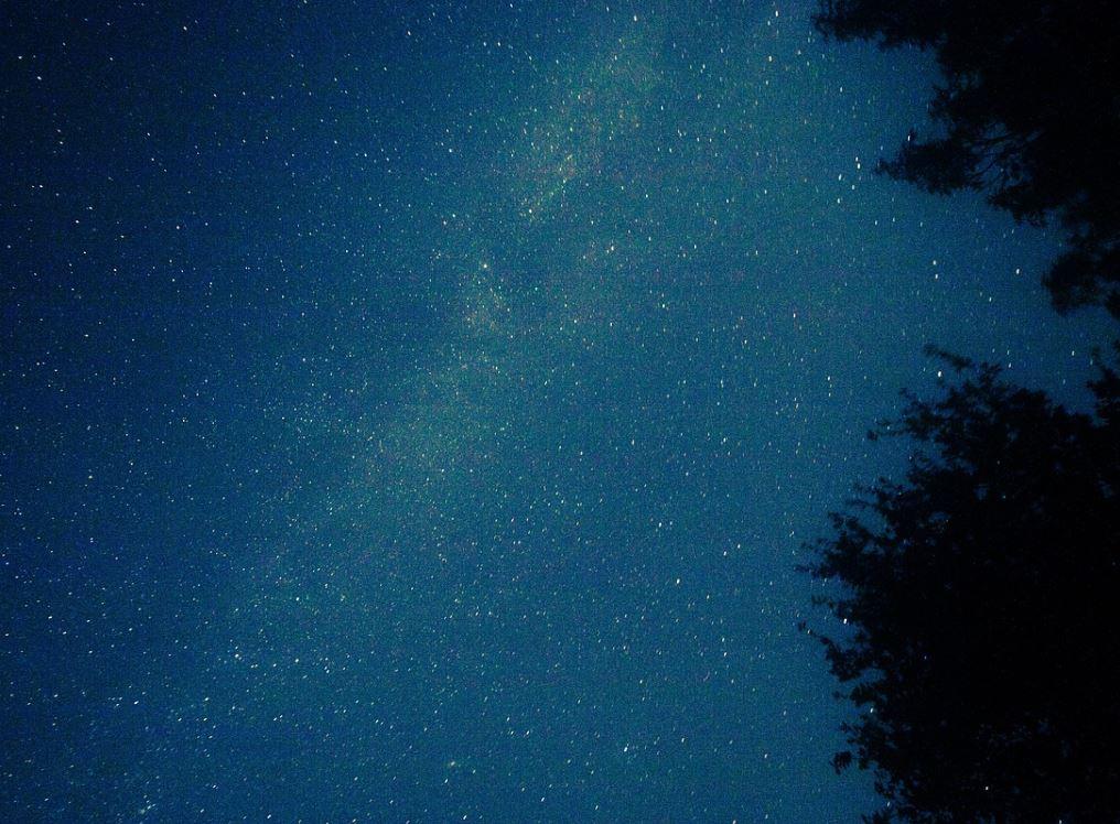 18. November Sternzeichen