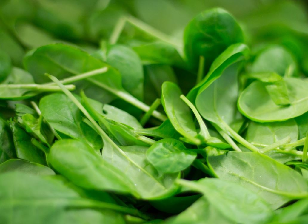 warum Spinat so gesund ist