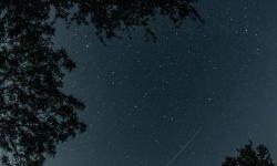 Horoskop: 22. November Sternzeichen