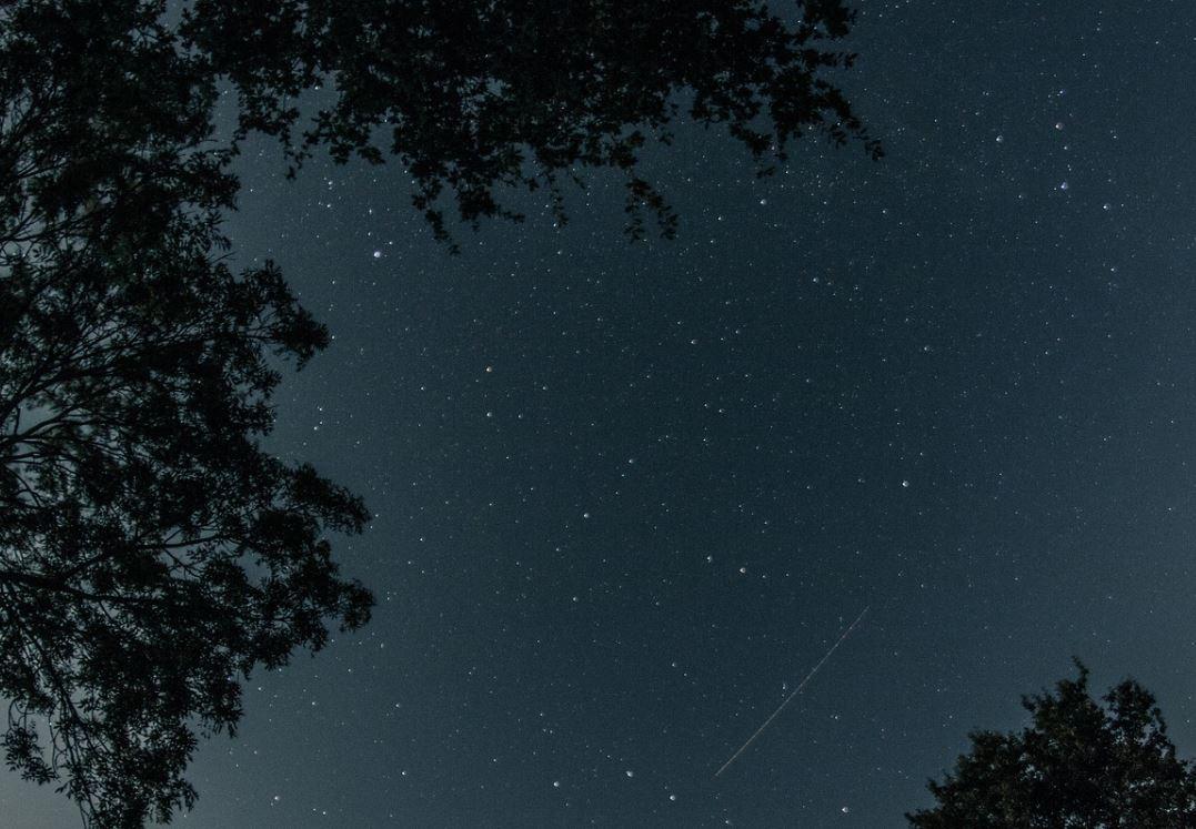 22. November Sternzeichen