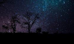 Horoskop: 1. Dezember Sternzeichen