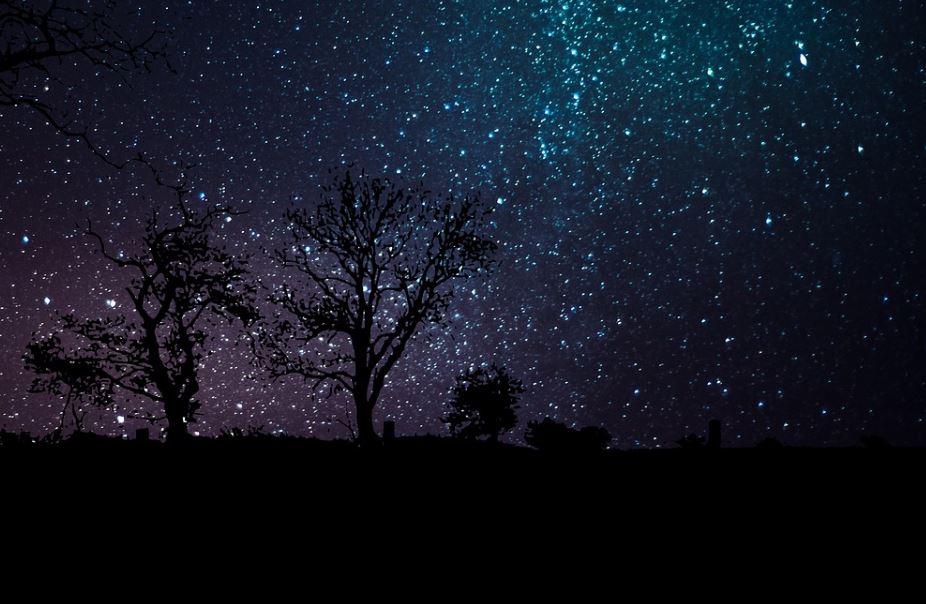 1. Dezember Sternzeichen