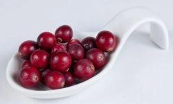 14 Gründe, warum Cranberry so gesund ist